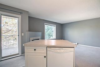 Photo 10: 205 7205 Valleyview Park SE in Calgary: Dover Apartment for sale : MLS®# A1152735