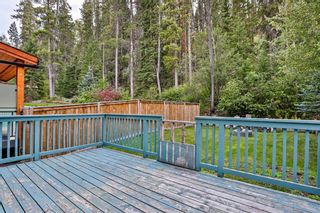 Photo 29: 917 Wilson Way: Canmore Detached for sale : MLS®# A1146764
