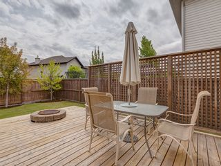 Photo 31: 87 Chapman Circle SE in Calgary: Chaparral House for sale : MLS®# 	C4064813