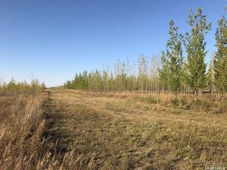 Photo 15: Greenfield Section RM 158 in Edenwold: Farm for sale (Edenwold Rm No. 158)  : MLS®# SK848878