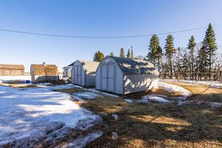 Photo 30: 55147 RGE RD 212: Rural Strathcona County House for sale : MLS®# E4233446