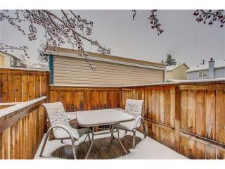 Photo 44: SOLD in 1 Day - Beautiful Strathcona Home By Steven Hill of Sotheby's International Realty