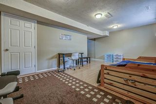 Photo 14: 702 800 Yankee Valley Boulevard SE: Airdrie Row/Townhouse for sale : MLS®# A1146510