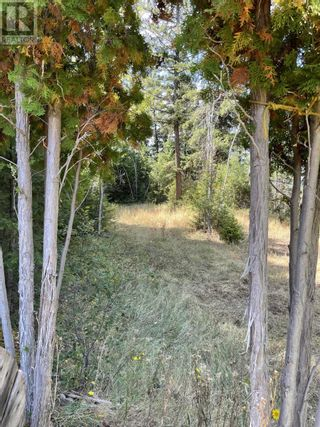 Photo 3: 1803 SOUTH LAKESIDE DRIVE in Williams Lake: Vacant Land for sale : MLS®# R2612495
