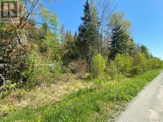 Photo 13: 5264 Rte 770 in Rollingdam: Vacant Land for sale : MLS®# NB058269