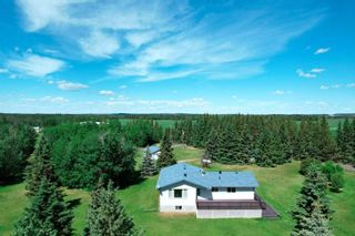 Photo 45: 49461 RGE RD 22: Rural Leduc County House for sale : MLS®# E4247442