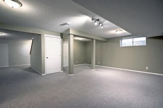 Photo 38: 60 Inverness Drive SE in Calgary: McKenzie Towne Detached for sale : MLS®# A1146418