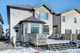 Photo 48: 119 PANTON Landing NW in Calgary: Panorama Hills Detached for sale : MLS®# A1062748