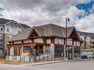 Photo 40: 1611 4641 128 Avenue NE in Calgary: Skyview Ranch Apartment for sale : MLS®# A1029088