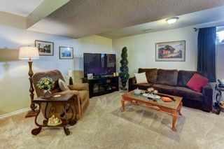 Photo 23: 17 12 Silver Creek Boulevard NW: Airdrie Row/Townhouse for sale : MLS®# A1153407