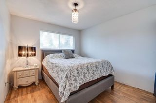 """Photo 15: 1233 ELLIS Drive in Port Coquitlam: Birchland Manor House for sale in """"Birchland Manor"""" : MLS®# R2555177"""