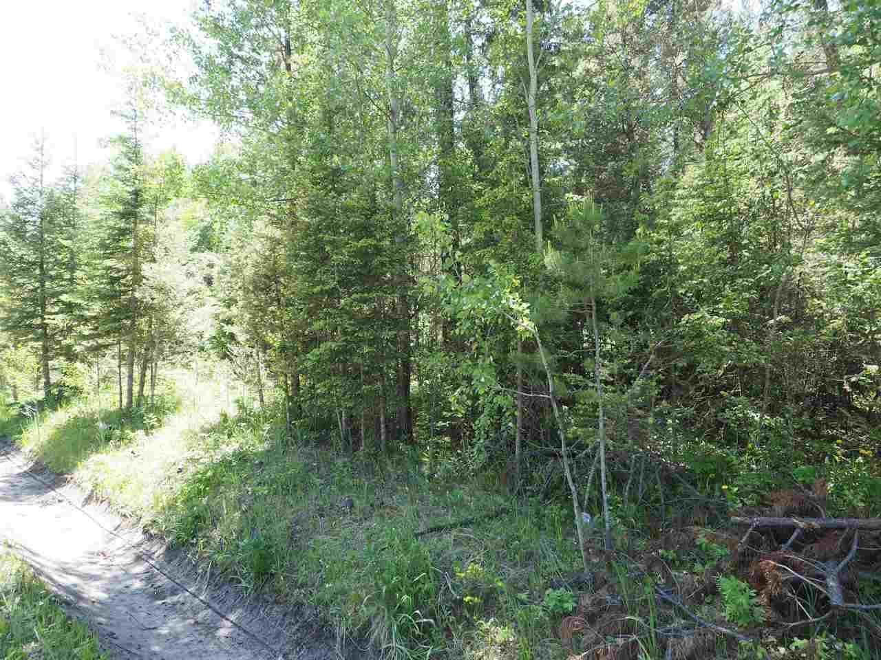 Photo 6: Photos: LOT 9 EASZEE Drive in 108 Mile Ranch: 108 Ranch Land for sale (100 Mile House (Zone 10))  : MLS®# R2467252