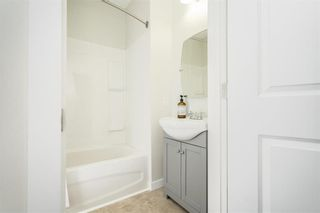 Photo 8: 367 Agnes Street in Winnipeg: West End Residential for sale (5A)  : MLS®# 202110420