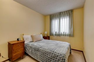 Photo 15: 147 Templevale Place NE in Calgary: Temple Detached for sale : MLS®# A1144568