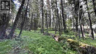 Photo 10: LOT 40 KALLUM DRIVE in 108 Mile Ranch: Vacant Land for sale : MLS®# R2591288