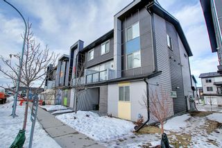 Photo 38: 201 135 Redstone Walk NE in Calgary: Redstone Apartment for sale : MLS®# A1060220
