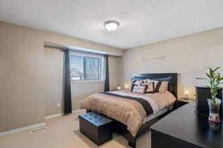 Photo 13: 113 13825 155 Avenue in Edmonton: Zone 27 Townhouse for sale : MLS®# E4239098