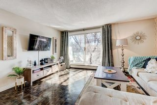Photo 5: 404 120 24 Avenue SW in Calgary: Mission Apartment for sale : MLS®# A1079776