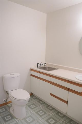 Photo 35: 170 Tipping Close SE: Airdrie Detached for sale : MLS®# A1121179