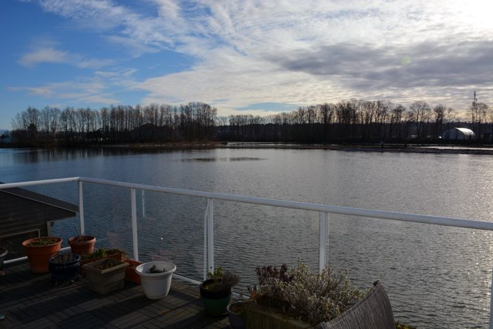 """Photo 17: Photos: 4 800 SOUTH DYKE Road in New Westminster: Queensborough House for sale in """"QUEENS GATE MARINA"""" : MLS®# R2539872"""