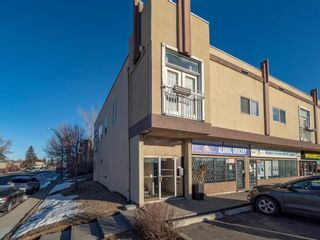 Main Photo: 207 4908 17 Avenue SE in Calgary: Forest Lawn Apartment for sale : MLS®# A1062571