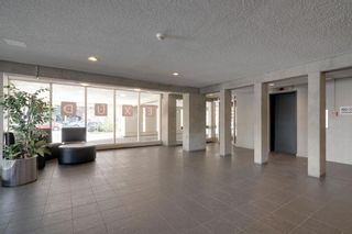 Photo 20: 903 1209 6 Street SW in Calgary: Beltline Apartment for sale : MLS®# A1146570