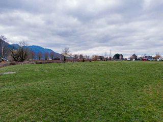 Photo 37: 1280 POWERHOUSE Road in Abbotsford: Sumas Prairie House for sale : MLS®# R2565055