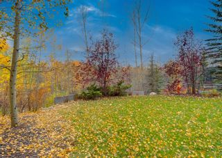 Photo 43: 655 Tuscany Springs Boulevard NW in Calgary: Tuscany Detached for sale : MLS®# A1153232