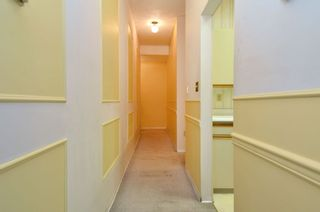 """Photo 11: 206 1345 W 15TH Avenue in Vancouver: Fairview VW Condo for sale in """"SUNRISE WEST"""" (Vancouver West)  : MLS®# R2007756"""