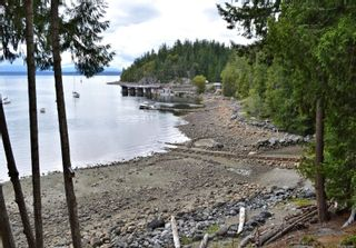 Photo 44: 320 Huck Rd in : Isl Cortes Island House for sale (Islands)  : MLS®# 863187
