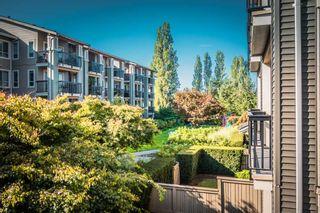 "Photo 24: 207 5655 210A Street in Langley: Salmon River Condo for sale in ""CORNERSTONE NORTH"" : MLS®# R2506248"