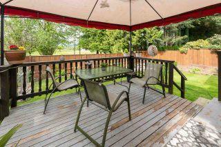 "Photo 29: 21225 DOUGLAS Avenue in Maple Ridge: Northwest Maple Ridge House for sale in ""The Orchard"" : MLS®# R2578046"