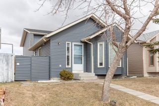 Main Photo: 161 TARADALE Close NE in Calgary: Taradale Detached for sale : MLS®# A1092953