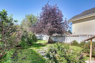Photo 40: 8 Martinridge Way NE in Calgary: Martindale Detached for sale : MLS®# A1141248