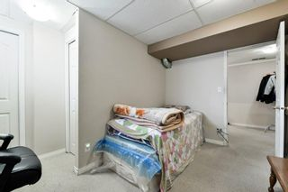 Photo 28: 10 Martha's Meadow Bay NE in Calgary: Martindale Detached for sale : MLS®# A1124430