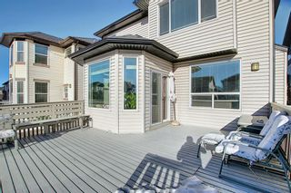 Photo 45: 119 PANTON Landing NW in Calgary: Panorama Hills Detached for sale : MLS®# A1062748