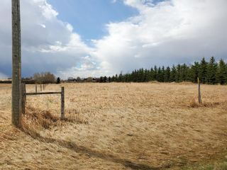 Photo 3: 9075 23 Avenue: Calgary Commercial Land for sale : MLS®# A1102257