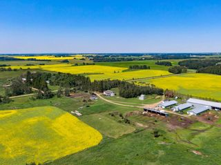 Photo 12: 461017A RR 262: Rural Wetaskiwin County House for sale : MLS®# E4255011