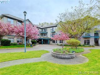Photo 1: 310 1485 Garnet Rd in VICTORIA: SE Cedar Hill Condo for sale (Saanich East)  : MLS®# 757974