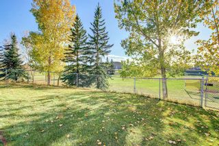 Photo 37: 129 Coral Shores Bay NE in Calgary: Coral Springs Detached for sale : MLS®# A1151471