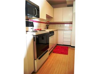 """Photo 7: 405 98 10TH Street in New Westminster: Downtown NW Condo for sale in """"PLAZA POINTE"""" : MLS®# V1002763"""