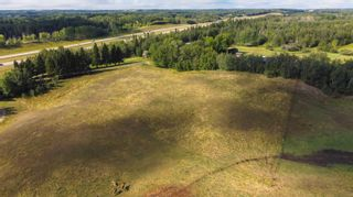 Photo 3: 1114B Highway 16: Rural Parkland County Rural Land/Vacant Lot for sale : MLS®# E4260241