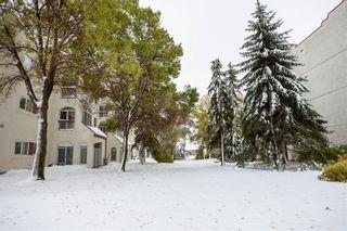 Photo 15: 203 3275 Pembina Highway in Winnipeg: St Norbert Condominium for sale (1Q)  : MLS®# 1928924