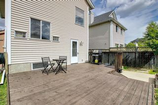 Photo 37: 47 INVERNESS Grove SE in Calgary: McKenzie Towne Detached for sale : MLS®# C4301288