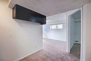 Photo 37: 66 Erin Green Way SE in Calgary: Erin Woods Detached for sale : MLS®# A1094602