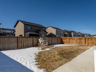 Photo 33: 39 Rainbow Falls Boulevard: Chestermere Detached for sale : MLS®# A1080652