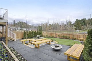 Photo 20: 23831 103A AVENUE in Maple Ridge: Albion House for sale : MLS®# R2155135