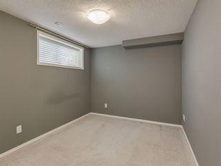 Photo 28: 300 CRAMOND Close SE in Calgary: Cranston Detached for sale : MLS®# A1013818