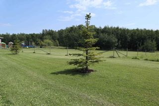 Photo 42: 15070 HWY 771: Rural Wetaskiwin County House for sale : MLS®# E4254089