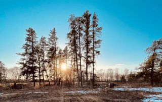 Photo 8: Over 1 acre lots in Hudson Bay: Lot/Land for sale : MLS®# SK850475